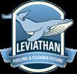 לוגו מאגר לוויתן